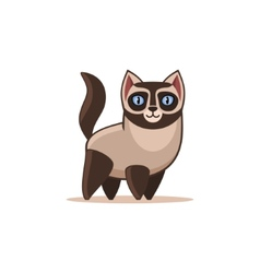 Siamese Cat Isolated on the White Background vector image