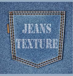 Back jeans pocket vector