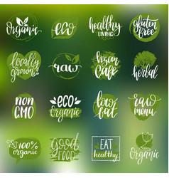 Eco organic bio signs vegan healthy vector