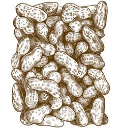 Engraving peanuts pattern vector