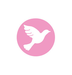 pigeon breast cancer awareness icon vector image