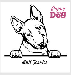 Puppy bull terrier - peeking dogs - breed face vector