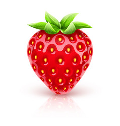 Ripe red strawberry berry vector
