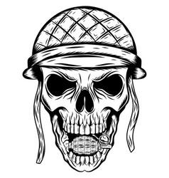skull in soldier helmet vector image