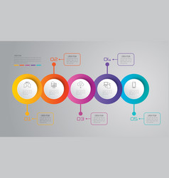 timeline infographics design with 5 options vector image