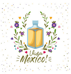 viva mexico colorful poster with tequila bottle vector image