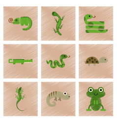 assembly flat shading style icons exotic wild vector image