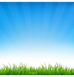 Blue sky with grass vector