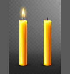 Burning extinguished candle isolated vector