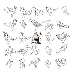 Cute collection of funny birds vector