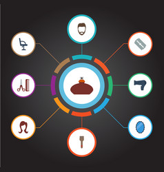 Flat icons looking-glass hairstyle bristle and vector