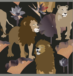 lions and lioness on black background seamless vector image