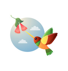 Motley small hummingbird with bright colorful vector