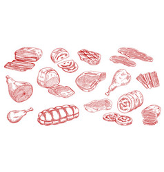 pork sausage veal ham and lamb meat sketch vector image