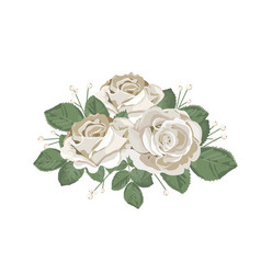 Retro bouquet design white roses with leaves and vector