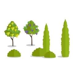 Set of Isolated Trees and Bushes vector image
