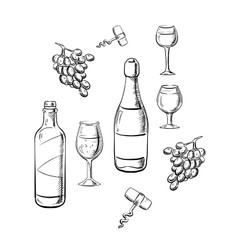 Bottles of wine glasses and grape sketches vector image vector image