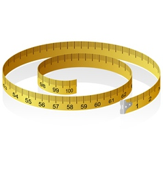 measuring tape with reflection vector image vector image