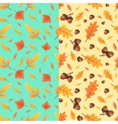 Autumn seamless patterns Fall leaves vector