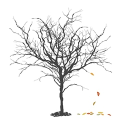 Autumn tree Fall Season concept vector