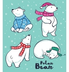 Polar Bears collection in colorful sweater scarf vector