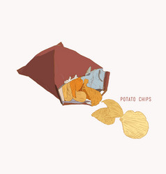 potato chips packaging bag of chip sketch vector image