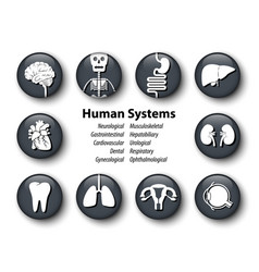 set of human systems icon round glass cover vector image
