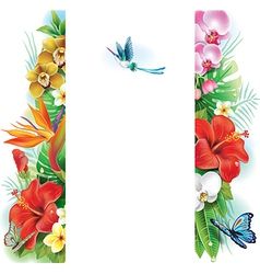 Banner from tropical flowers and leaves vector image