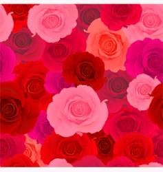 rose wallpaper pattern vector image vector image