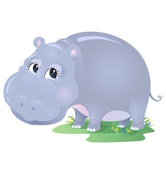 Cartoon animal hippo isolated on white vector image vector image