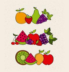 healthy fruits design vector image