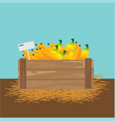 banana in a wooden crate vector image vector image