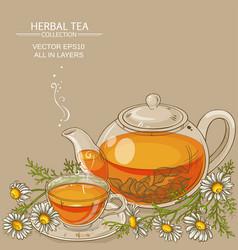 Chamomile tea vector
