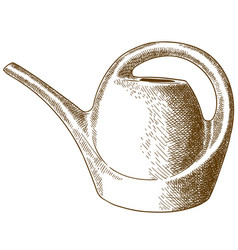 Engraving watering can vector