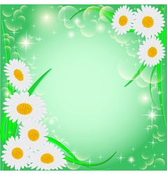 green background with daisies and stars vector image