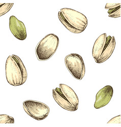 Seamless pattern with hand drawn pistachio nuts vector