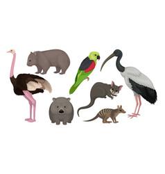 Wild australian animals and birds isolated on vector
