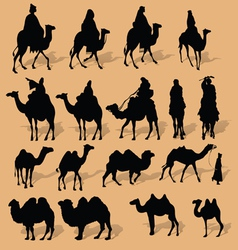Camel silhouette vector