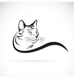 cat design on white background pet animal vector image