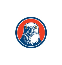 american bald eagle head circle retro vector image