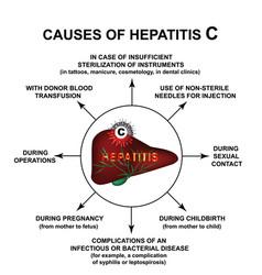 Causes hepatitis c world hepatitis day vector