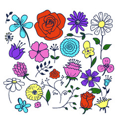 Flowers hand drawn elements vector