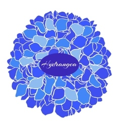 Hand-drawn of blue hydrangea vector
