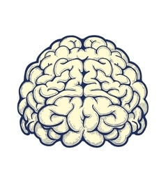 Human brain hand drawn icon vector