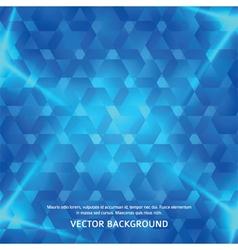 ice shou vector image