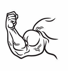 muscular strong arm powerful hand bicep gym vector image