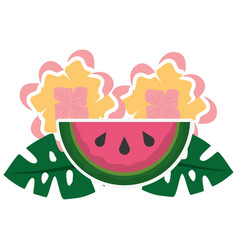 watermelon flowers leaves tropical summer vector image