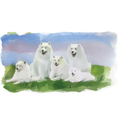 dog husky four white dogs vector image