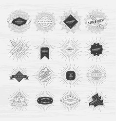circle badges set with sunburst frames vintage vector image