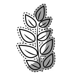 Figure plant branch decoration design vector